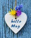 Hello May greeting card with decorative white heart and spring flowers on old blue wooden background. Royalty Free Stock Photo