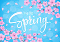 Hello spring background with cherry blossoms flowers branches