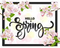 Hello spring background with cherry blossoms, leaves and branches.Greeting card with hand drawn lettering. Vector