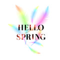 Hello Spring, bright bird feathers on a white background. Royalty Free Stock Photo