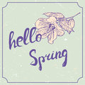 Hello spring hand drawn lettering with hawaii hibiscus flower. Vintage grunge marriage design template, floral artwork Royalty Free Stock Photo