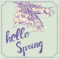 Hello spring hand drawn lettering with snowdrop flowers. Vintage grunge marriage design template, floral artwork. Vector Royalty Free Stock Photo