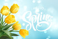 Hello Spring hand Lettering with tulip flower. Vector illustration