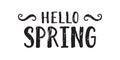 Hello spring inscription.