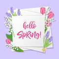 Hello spring lettering. Spring flowers on white paper background with seasonal spring text. Vector illustration.