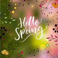 Hello spring text on blurred green and pink background with lights and hand drawn illustrations of flowers and plants