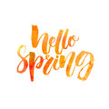 Hello spring text. Handwritten brush lettering with watercolor texture isolated on white background