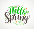 Hello spring text typography vector design with colorful flowers