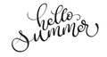 Hello summer text on white background. Calligraphy lettering illustration EPS10