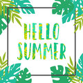 Hello summer. Tropical leaves frame. Royalty Free Stock Photo