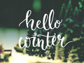 Hello winter typography overlay on blurred photo of christmas trees lettering banner for greeting cards and social media content Stock Image