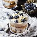 image photo : Homemade yogurt with granola muesli and blueberries