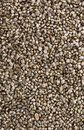 Hemp Seed background Royalty Free Stock Photo