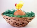 Hen on egg in basket toy Stock Photography