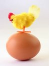 Hen on egg toy sitting Royalty Free Stock Photography