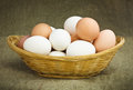 Hen's Eggs in a Basket Stock Photo