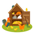 Henhouse with funny birds on a green lawn isolated vector illustration