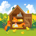 Henhouse with funny birds on a green lawn vector illustration