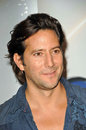 Henry Ian Cusick at the Disney ABC Television Group Summer Press Junket, ABC Studios, Burbank, CA. 05-15-10 Stock Photo