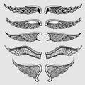 Heraldic bird, angel wings vector set Royalty Free Stock Photo