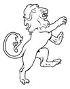 Heraldic coat of arms lion illustration a on its hind legs like those found on a crest emblem or on a shield Royalty Free Stock Photo