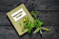 Herb bennett geum urbanum and directory medicinal plant also known as wood avens bennet colewort st benedict s herbalist handbook Royalty Free Stock Photography