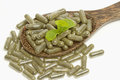 Herb capsule with green herbal leaf Royalty Free Stock Photo