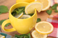 Herb hot tea with mint and lemon Royalty Free Stock Photo