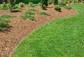 Herbaceous Border Royalty Free Stock Photo