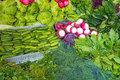 Herbage and salad at a market for sale Stock Image