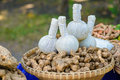 Herbal compress ball on the basket of herb Stock Image