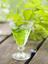 Herbal liquor in glass selective focus Royalty Free Stock Image
