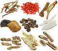 Herbal medicine : Assortment of Dried Chinese herb Royalty Free Stock Photography