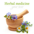 Herbal medicine - camomile, cornflowers Royalty Free Stock Images