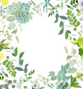 Herbal mix square vector frame. Hand painted plants, branches, leaves, succulents and flowers on white background. Royalty Free Stock Photo