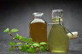 Herbal natural tincture Royalty Free Stock Photo