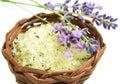 Herbal sea salt Stock Images