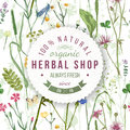 Herbal shop round emblem with herbs and flowers