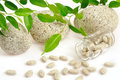 Herbal supplement pills spilling out of bottle Royalty Free Stock Photography