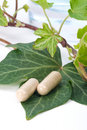 Herbal supplements Royalty Free Stock Photo
