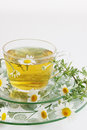 Herbal tea of chamomile drug healing drink Stock Photo