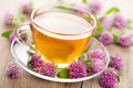 Herbal tea and clover flowers Stock Photography