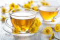 Herbal tea with coltsfoot flowers yellow Stock Image