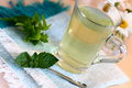 Herbal tea cup of with mint Stock Photography