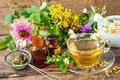 Herbal tea cup of with wild flowers and various herbs Stock Image