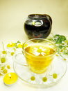 Herbal tea with daisy essence Royalty Free Stock Photography