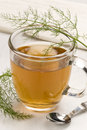 Herbal tea. Fennel. Royalty Free Stock Photography