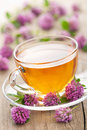 Herbal tea and clover flowers Royalty Free Stock Photo