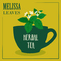 Herbal tea with Melissa leaves. The design of the label.