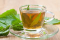 Herbal tea with nettle blossom inside teacup, stinging nettle tea Royalty Free Stock Photo